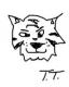 Timotheus Tiger